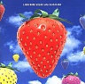 LIGHTNING SEEDS THE /UK/ - Jollification