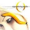 A PERFECT CIRCLE - Thirteenth step-2lp-180 gram vinyl 2014